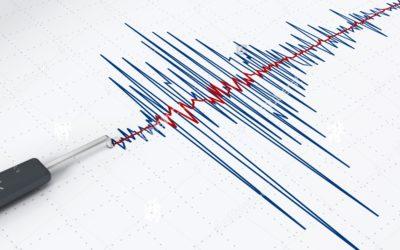 Linee Guida per la classificazione del rischio sismico